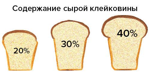 Содержание сырой клейковины в пшеничной муке играет значительную роль в хлебопекарной отрасли!